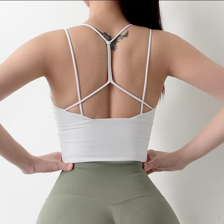 padded sports bra beauty back sexy bras